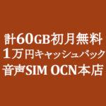 【OCNモバイルONE】計60GB初月無料 1万円キャッシュバック 音声SIM ~1/31