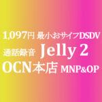 初登場 Jelly 2 MNP&OP 1,097円 最小DSDVおサイフ【OCNモバイルONE】積算紹介 ~9/3